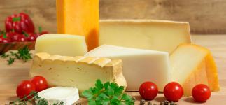 Todo sobre el queso: sabroso, embriagador y altamente nutritivo