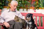 Anciano sentado en un banco junto a un gato y un perro