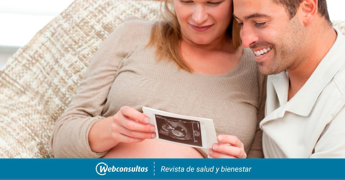 Las tres ecografías del embarazo