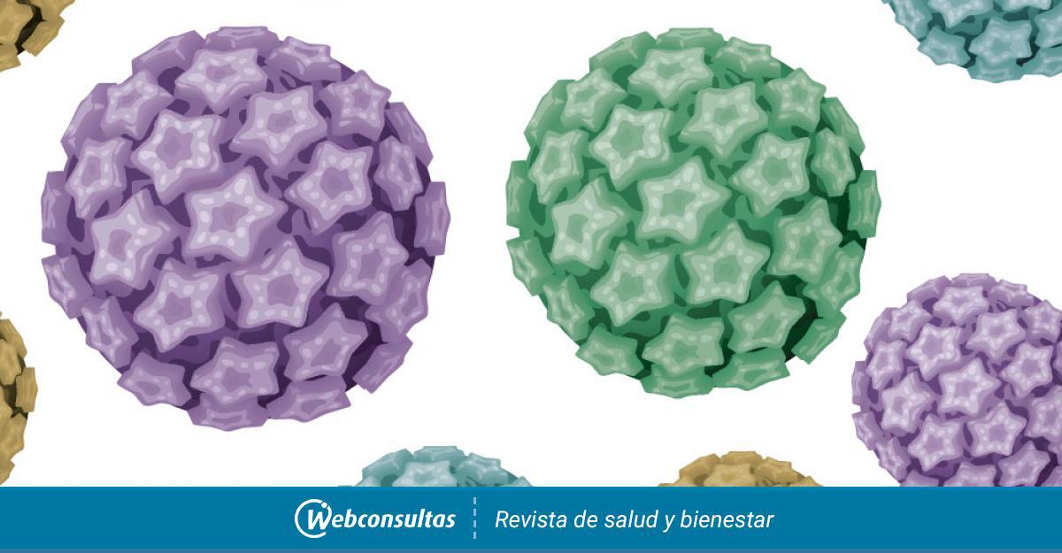 papillomaviridae familia)