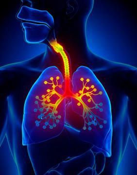 Sistema enfermedades tabaquismo del respiratorio