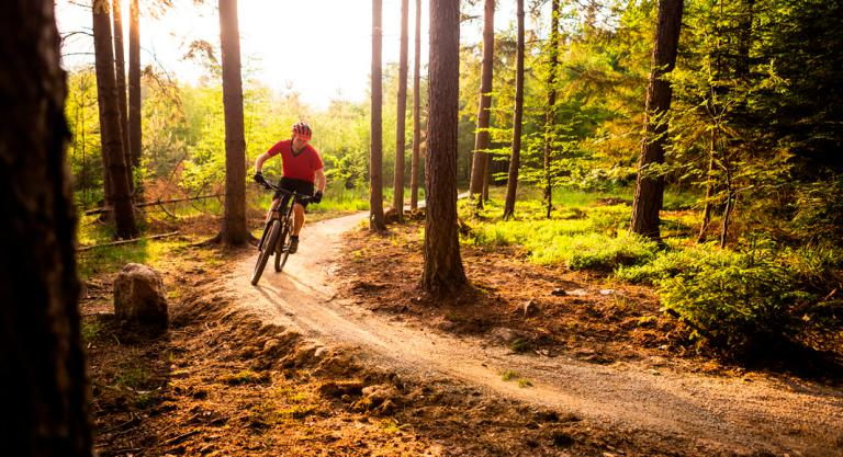 Beneficios del mountain bike