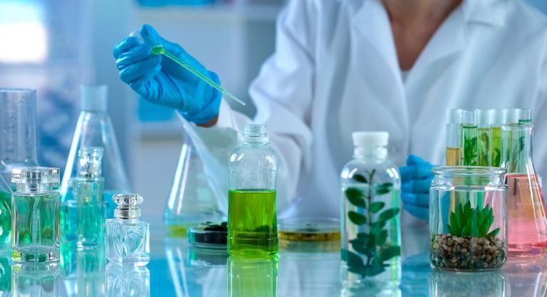 Qué es la yemoterapia, beneficios y qué aplicaciones tiene
