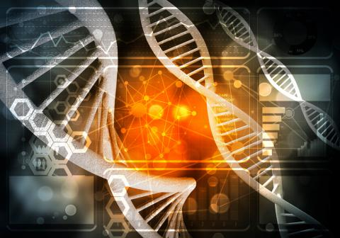 The genetic code as a cause of sucrose intolerance