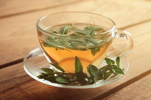 como preparar el te de moringa con hojas frescas