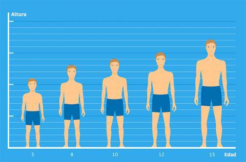 c02463e76 Percentiles, curvas y tablas de crecimiento - Bebés y niños