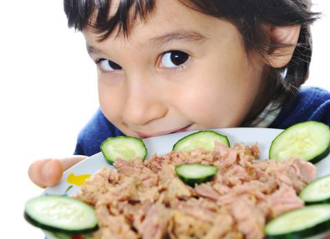 Beneficios Del Atún Para La Salud Y Contraindicaciones Dieta Y Nutrición