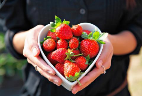 Propiedades nutritivas de la yuca dulce