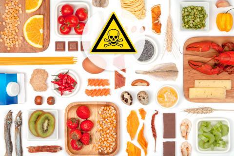 habitos saludables para el cuidado del sistema endocrino
