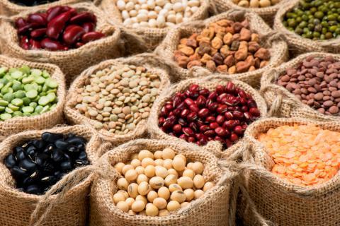 Dieta a base de legumbres y verduras