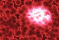 Hallan un compuesto que sólo ataca a las células del cáncer