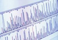 Vivir más y mejor será posible gracias a la medicina genómica
